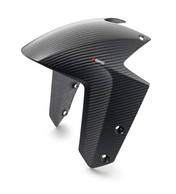 CARBON FRONT FENDER 1290SD